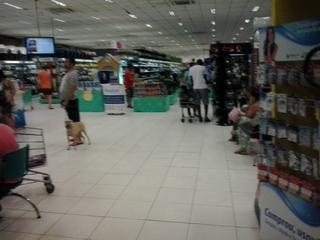 Foto de Pet Center Marginal - Marginal Tietê enviada por Milton De Abreu Cavalcante em 13/01/2014